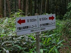 行動(ぎょうどう)の滝は・・・?  三重県名張市_d0055236_17365038.jpg