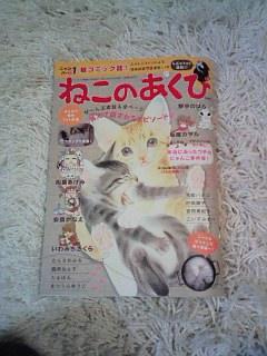 猫漫画雑誌ラッシュ!_c0023353_1425725.jpg