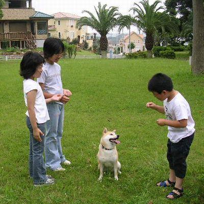 2006年6月25日龍平君姉弟と遊ぶ_f0060461_1528491.jpg