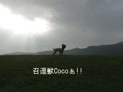 f0067361_20255127.jpg