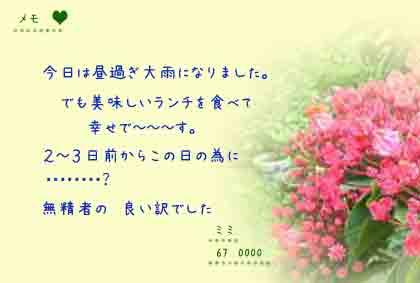 c0017802_1745194.jpg