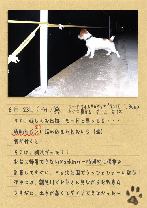 b0040323_19523.jpg
