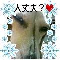b0108053_1743341.jpg