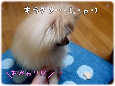 b0078073_1817094.jpg