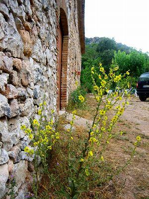 Prenafetaの村での週末_b0064411_19151131.jpg