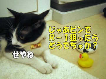 b0041182_22281993.jpg