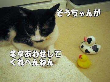 b0041182_2245592.jpg