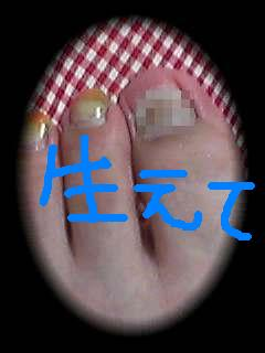 b0001204_0214984.jpg