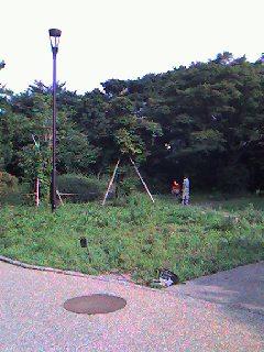 ~池の水増水計画にご協力お願いします!~_b0049307_1750879.jpg