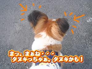 f0011845_227312.jpg