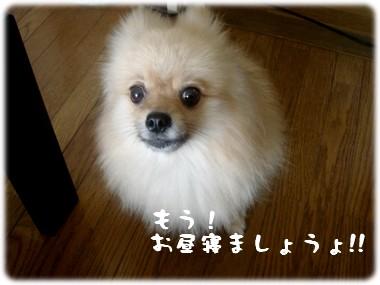 b0078073_22473272.jpg