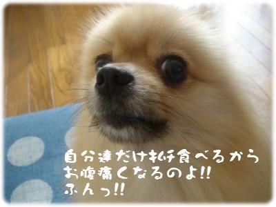 b0078073_22485360.jpg