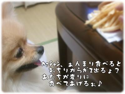 b0078073_22503499.jpg