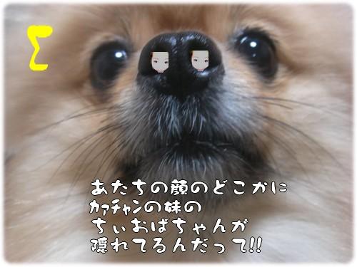 b0078073_23502582.jpg