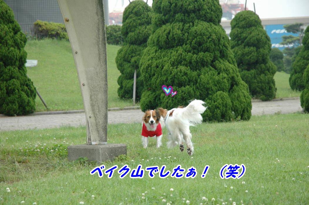 c0075585_1353912.jpg