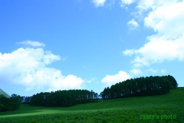 明日は曇り・・・_a0071514_22302054.jpg