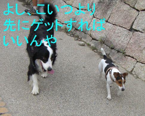 f0053952_15403953.jpg