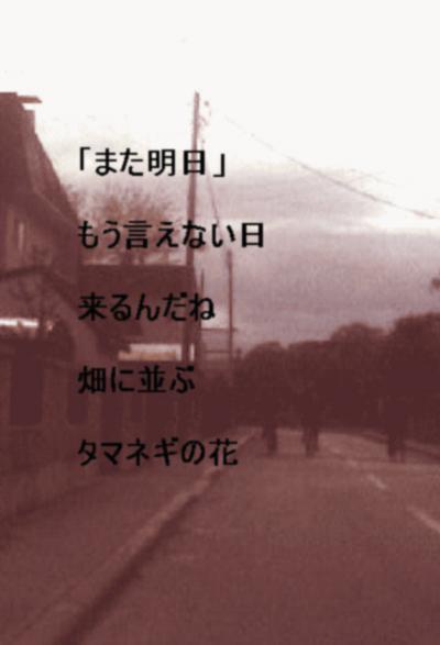 b0065259_0411132.jpg