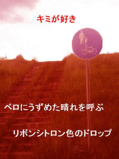 b0065259_0413170.jpg
