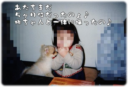b0078073_22261896.jpg