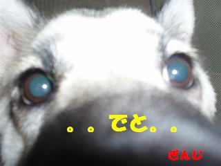 c0000189_15171641.jpg