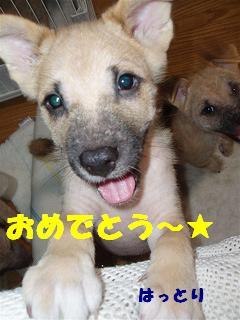 c0000189_1545949.jpg
