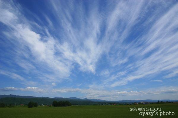 天気予報はずれ_a0071514_18171839.jpg