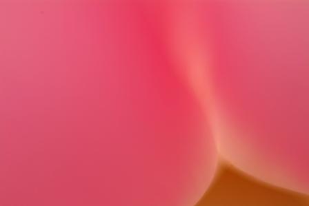 f0078127_1638993.jpg