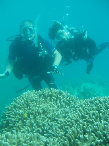 7月1日サンゴで大盛り上がり!_c0070933_21183653.jpg