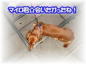 f0011845_17551970.jpg