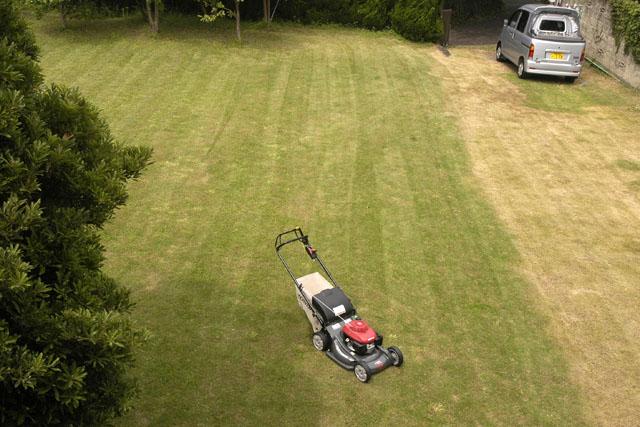 芝刈り機_f0103459_1801029.jpg