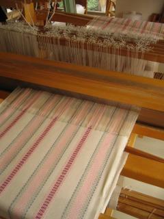 たて糸効果のローゼンゴン_f0088082_2373699.jpg