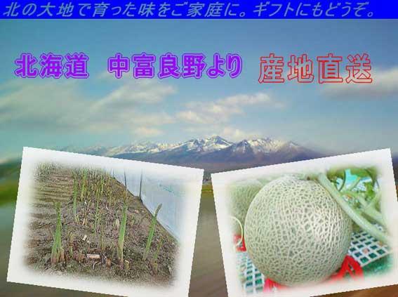 2006.07.02 中ふらのメロン_c0016718_20243015.jpg