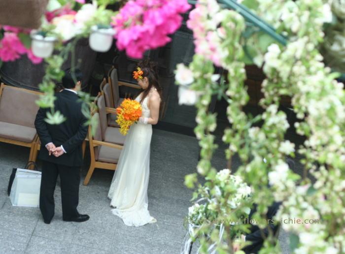 ブーゲンビリアの花嫁さま_a0042928_2143966.jpg
