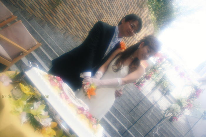 ブーゲンビリアの花嫁さま_a0042928_214555.jpg
