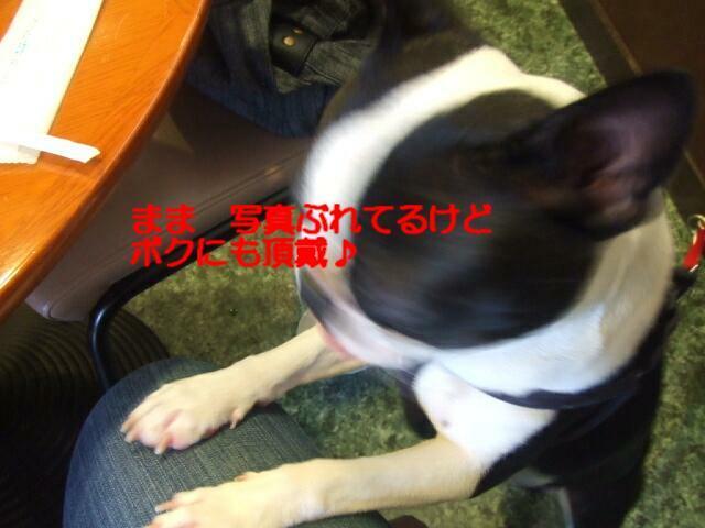 f0059334_16104293.jpg