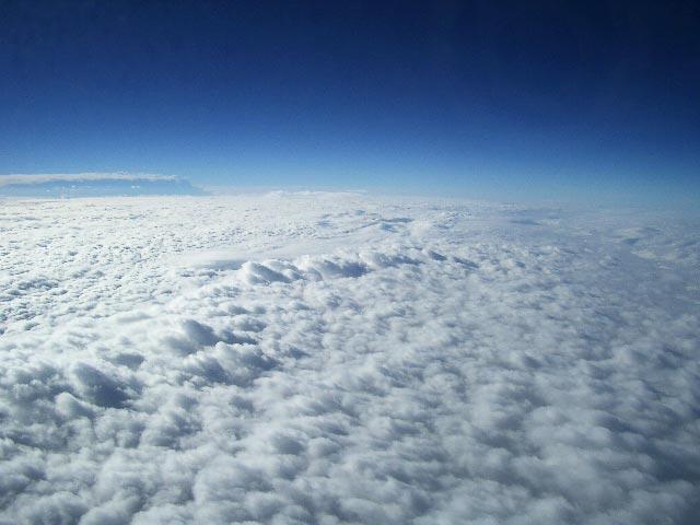 雲の上 : 田中龍生_花鳥風月