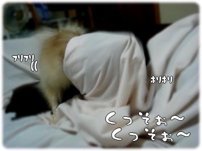 b0078073_0103645.jpg