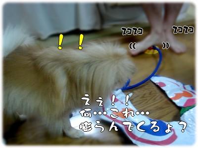 b0078073_0174137.jpg