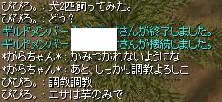 a0055677_395115.jpg