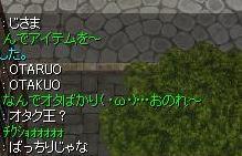 b0051419_17243846.jpg
