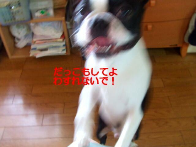 f0059334_9263085.jpg