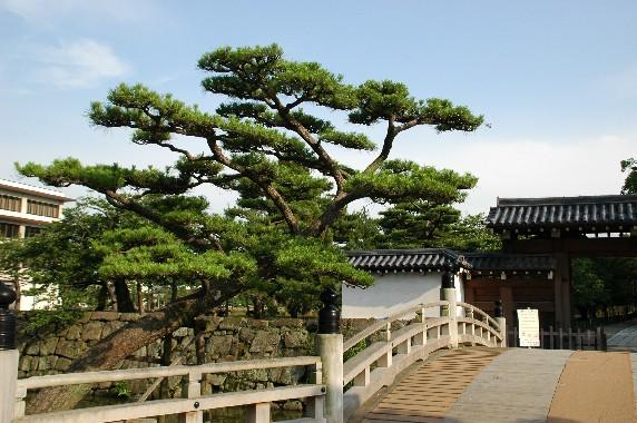 和歌山城の外周を歩こう  1_b0093754_2238599.jpg
