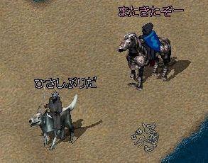 b0061873_4465880.jpg