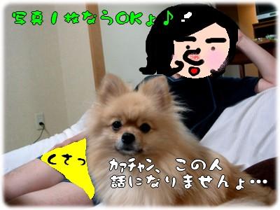b0078073_2230778.jpg