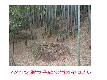 f0017409_12103071.jpg
