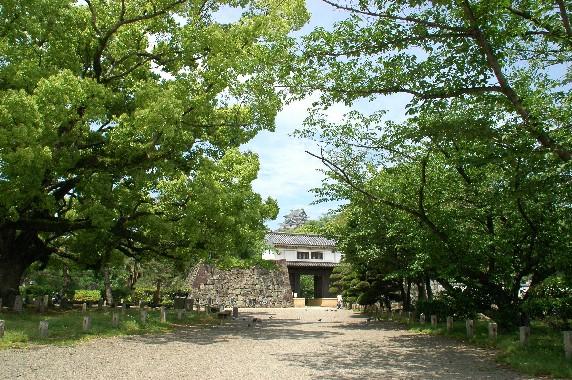 和歌山城の外周を歩こう  2_b0093754_22284250.jpg