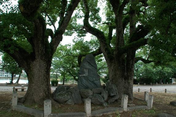 和歌山城の外周を歩こう  2_b0093754_22285599.jpg