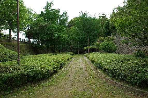 和歌山城の外周を歩こう  2_b0093754_22291840.jpg