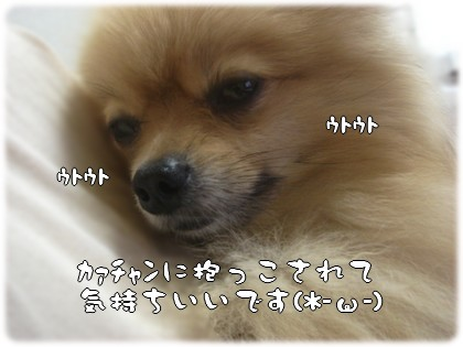 b0078073_2339499.jpg